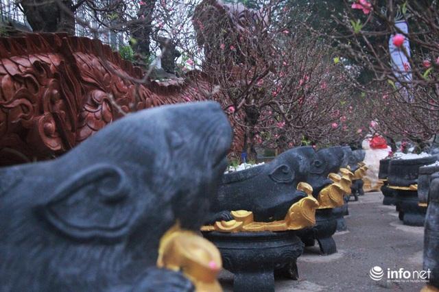 Chuột cưỡi hũ vàng, cõng đào, quất Nhật Tân hút khách - Ảnh 5.