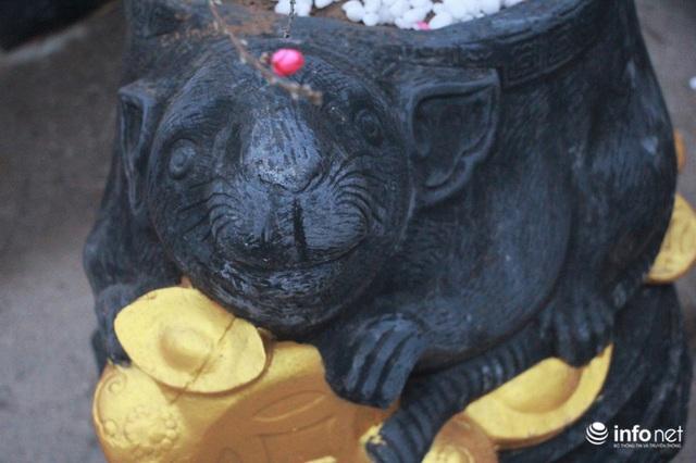 Chuột cưỡi hũ vàng, cõng đào, quất Nhật Tân hút khách - Ảnh 2.