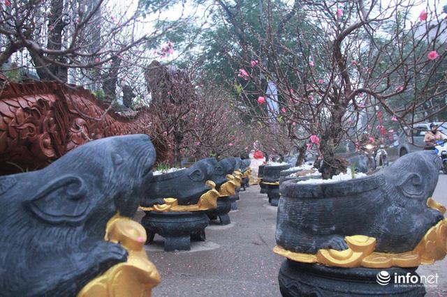 Chuột cưỡi hũ vàng, cõng đào, quất Nhật Tân hút khách - Ảnh 3.