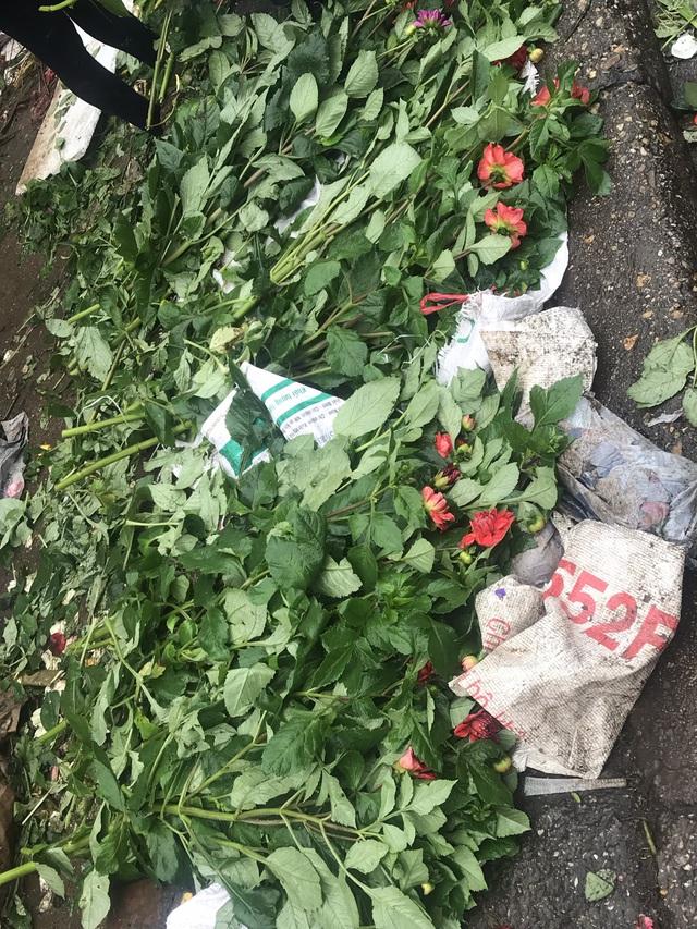 Chiều 30 Tết: Đào đại hạ giá 50.000 đồng/cành vẫn vắng bóng người mua, tiểu thương ngậm ngùi vứt lên xe rác - Ảnh 8.