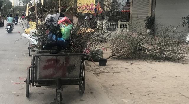 Chiều 30 Tết: Đào đại hạ giá 50.000 đồng/cành vẫn vắng bóng người mua, tiểu thương ngậm ngùi vứt lên xe rác - Ảnh 9.