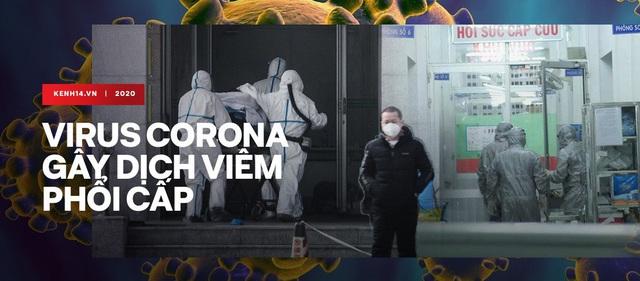 Đêm giao thừa không ngủ: Bác sĩ từ nhiều nơi từ biệt gia đình, tức tốc bay đến Vũ Hán hợp lực chống virus corona - Ảnh 9.