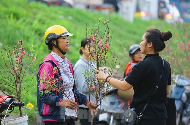 Đào, quất, hoa ngập tràn phố trước rằm tháng Chạp - Ảnh 5.