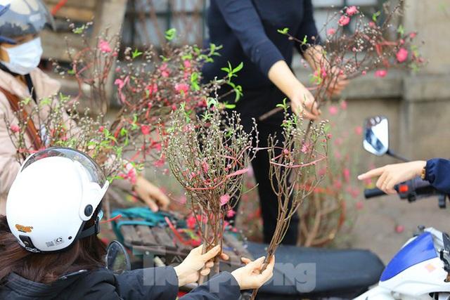 Đào, quất, hoa ngập tràn phố trước rằm tháng Chạp - Ảnh 8.