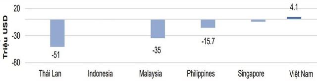 Thị trường chứng khoán Việt Nam sẽ sớm bình ổn trở lại - Ảnh 3.