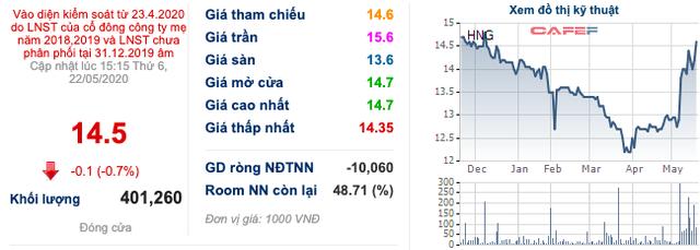 HAGL Agrico (HNG) huy động 200 tỷ trái phiếu - Ảnh 1.