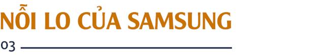 GS. Nguyễn Mại: Tương lai dòng FDI vào Việt Nam và nỗi lo của những doanh nghiệp như Samsung khi Vingroup, Viettel... lớn lên - Ảnh 6.