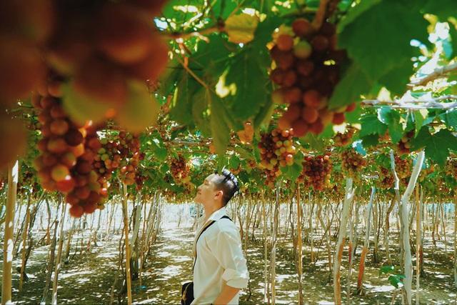 """Chinh phục đảo Bình Hưng hè này chỉ với 2,8 triệu VNĐ: Vẻ đẹp hoang sơ đầy thơ mộng của 1 trong """"Tứ Bình"""" thiên đường biển của Việt Nam - Ảnh 7."""