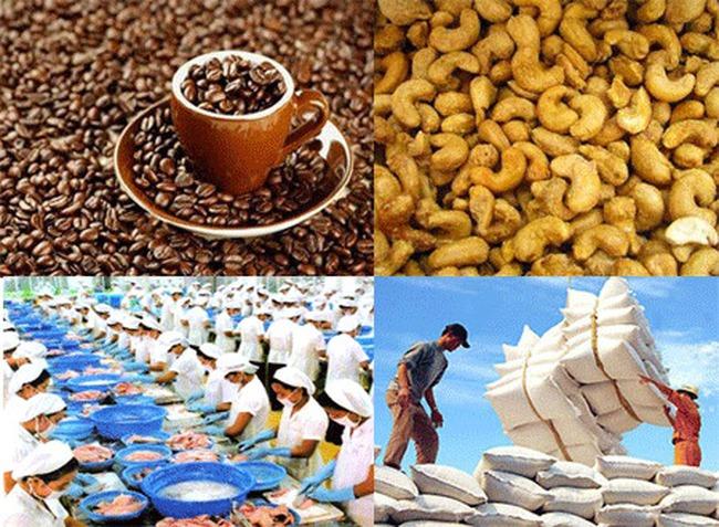 """Xuất khẩu nông sản: Vì sao còn nhiều """"trăn trở""""?"""