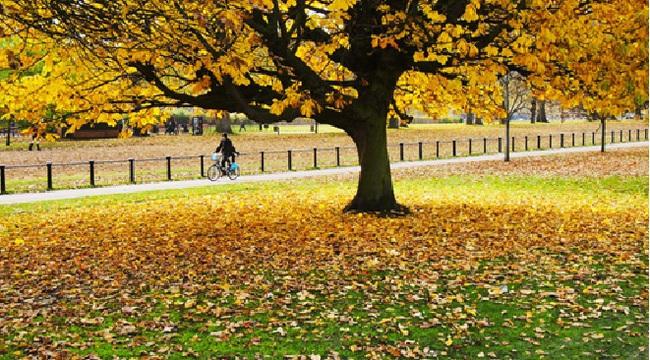 Ưu đãi mùa thu, đi châu Âu & châu Mỹ từ 16.875.000 VNĐ