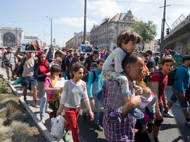 Hàng trăm người di cư tiếp tục vượt biên giới Serbia vào Hungary