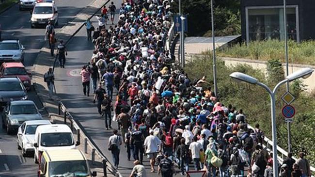 Tây Ban Nha tiếp nhận hàng chục nghìn người di cư như EC yêu cầu