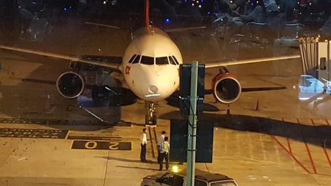 Máy bay thủng chóp radar vì đâm phải chim