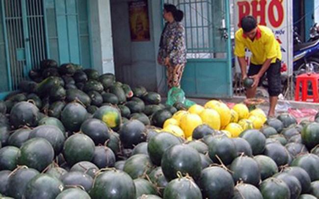 Giá dưa hấu tăng vì nhiều tiểu thương gom dưa xuất sang Trung Quốc