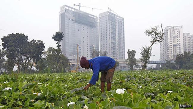 """Tăng trưởng kinh tế Ấn Độ: Đuổi theo """"rồng"""" Trung Quốc"""