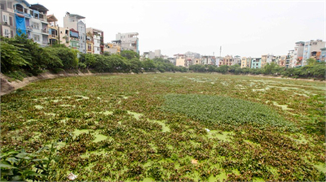Hà Nội mất 72 nghìn m2 mặt hồ trong 5 năm