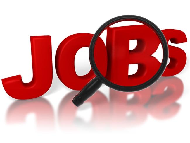 VNDI thông báo tuyển dụng hàng loạt nhân sự tháng 6/2015