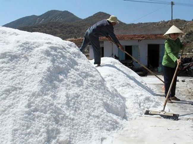 Khánh Hòa tồn đọng 40.000 tấn muối do giá muối giảm mạnh