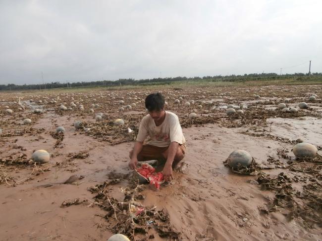 Quảng Nam:Trắng tay vì lũ bất thường