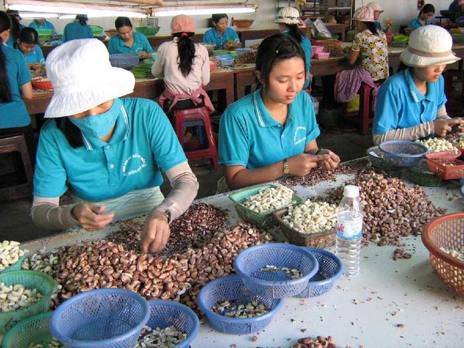Doanh nghiệp xuất khẩu cần quan tâm việc phòng vệ thương mại