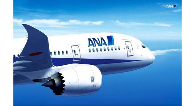 Hãng hàng không Nhật Bản muốn sở hữu cổ phần của Vietnam Airlines là ai?