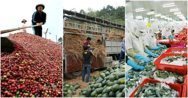 Xuất khẩu nông sản khó 'về đích'