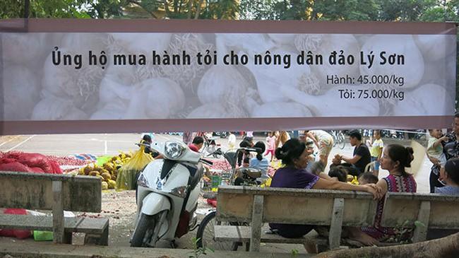 """Tỏi Lý Sơn """"cháy hàng"""" lấy đâu 300 tấn ế ở Hà Nội?"""