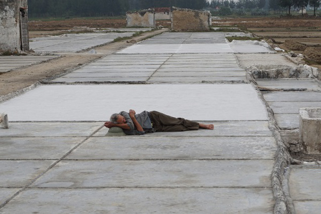 Nghệ An: Đắng mùa muối ế
