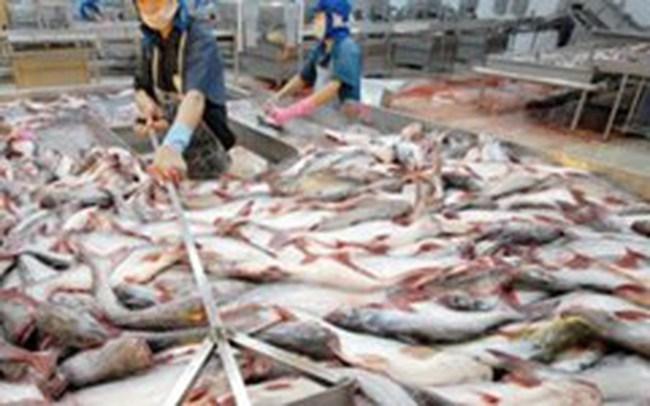 32.000 tấn thủy sản xuất khẩu bị trả về, tiêu thụ đâu?