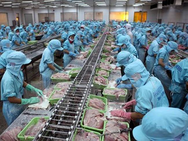 """Tạo """"đẳng cấp"""" cho sản phẩm cá tra trên thị trường thế giới"""