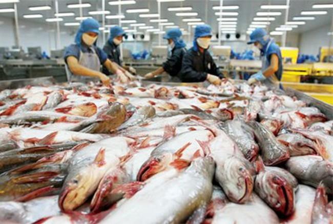 Hoa Kỳ vẫn là thị trường nhập khẩu hàng đầu của thủy sản Việt Nam