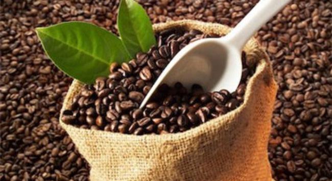 Xuất khẩu cà phê trước áp lực cạnh tranh giá