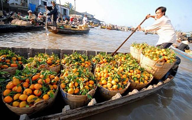 ANZ: Kinh tế Việt Nam đang trên đà phục hồi mạnh mẽ
