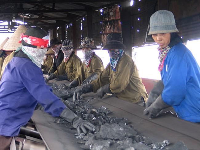 Vẫn còn 30.000 công nhân ngành than đang phải nghỉ làm