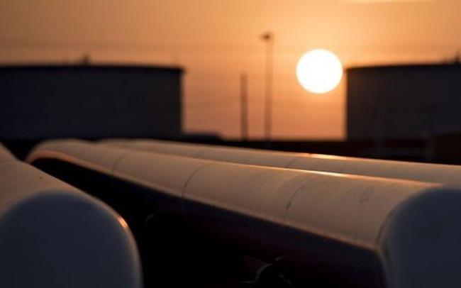 Giá dầu thế giới rớt thấp nhất 6 năm