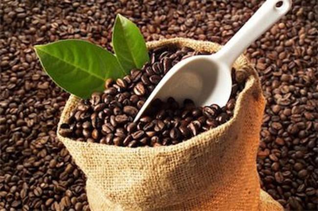 Xuất khẩu cà phê tháng đầu năm đạt hơn 100 nghìn tấn