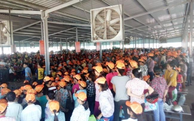 1.000 công nhân đình công phản đối chủ quản người Trung Quốc