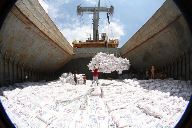 Đã xuất khẩu hơn 4,3 triệu tấn gạo