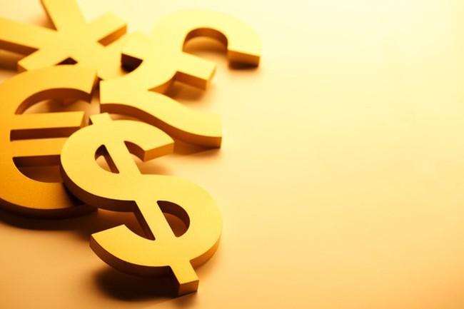 DWS Fund thêm DPM vào danh mục, NAV tháng 8 giảm 5,89%