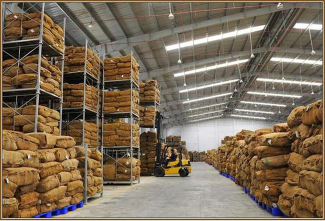 Không áp dụng hạn ngạch thuế quan NK thuốc lá nguyên liệu từ ASEAN