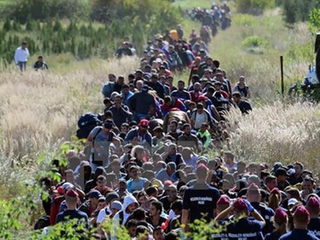 Vấn đề người di cư: Sẽ có tác động tích cực với kinh tế châu Âu?