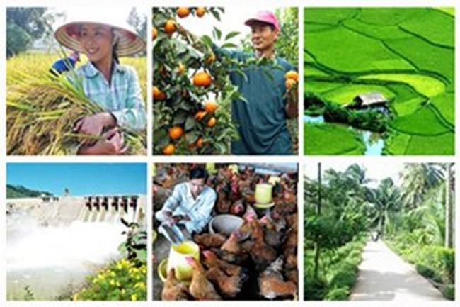 Sau 10 năm, vốn FDI vào nông nghiệp chỉ còn... 1%