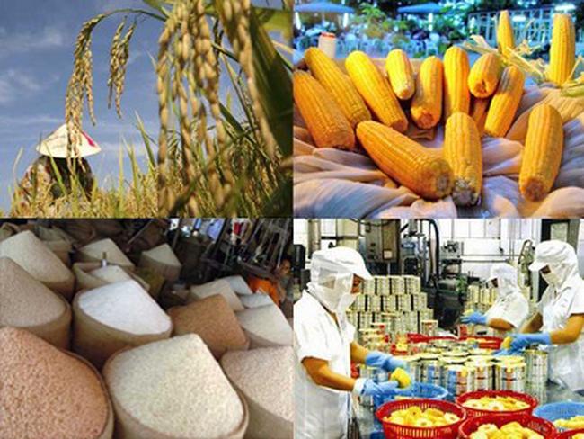 Bức tranh nông nghiệp Việt - Mỹ sau khi TPP có hiệu lực