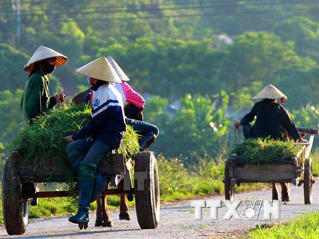 Việt Nam cần 30 tỷ USD để thực hiện Chiến lược tăng trưởng xanh
