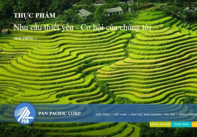 Công ty mẹ PAN: Quý 3 lãi ròng 32 tỷ đồng cao gấp 2 lần cùng kỳ