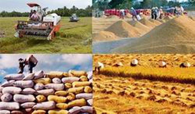 Bình ổn giá một số mặt hàng nông nghiệp