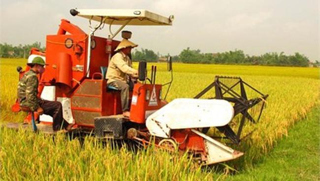 Chính sách thu hút DN đầu tư vào nông nghiệp chưa hiệu quả
