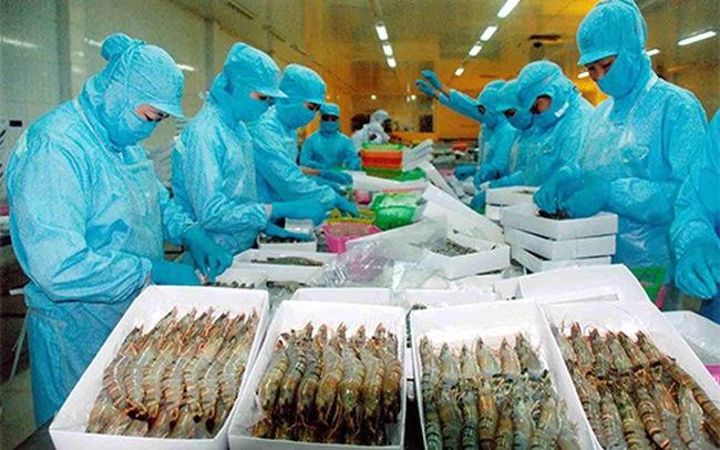Phát hiện nhiều lô hàng thủy sản nhập khẩu nhiễm bệnh