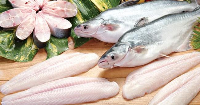 Sở hữu hơn 8% cổ phần, SCIC lại phản đối kế hoạch phát hành thêm của Agifish