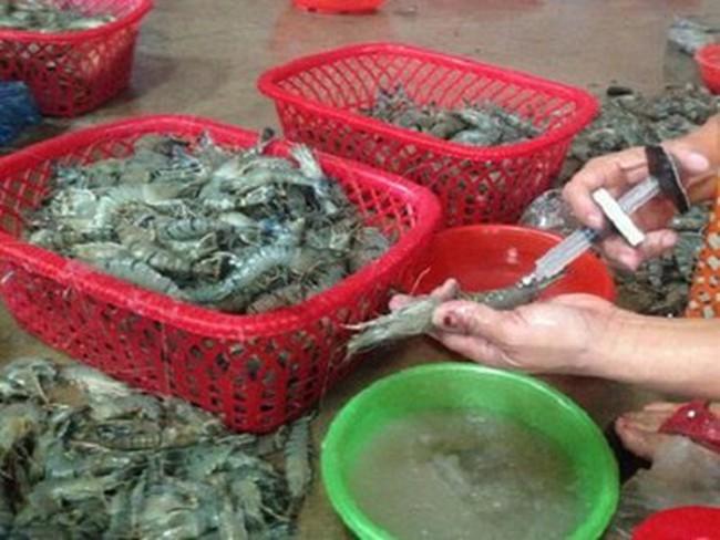 Hà Nội: Cận cảnh bơm tạp chất vào tôm quy mô lớn